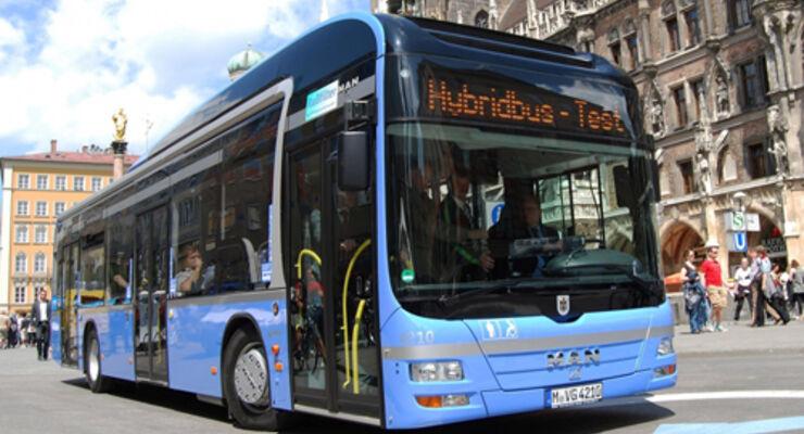 50 Hybridbusse
