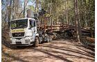 Truckjobs Fahrer von Rundholz-Transporter